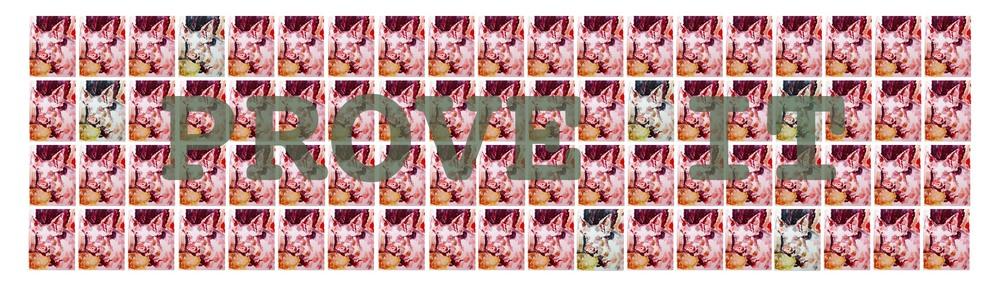 Shan Crosbie,  Prove it  (installation), 2015,digital mock-up