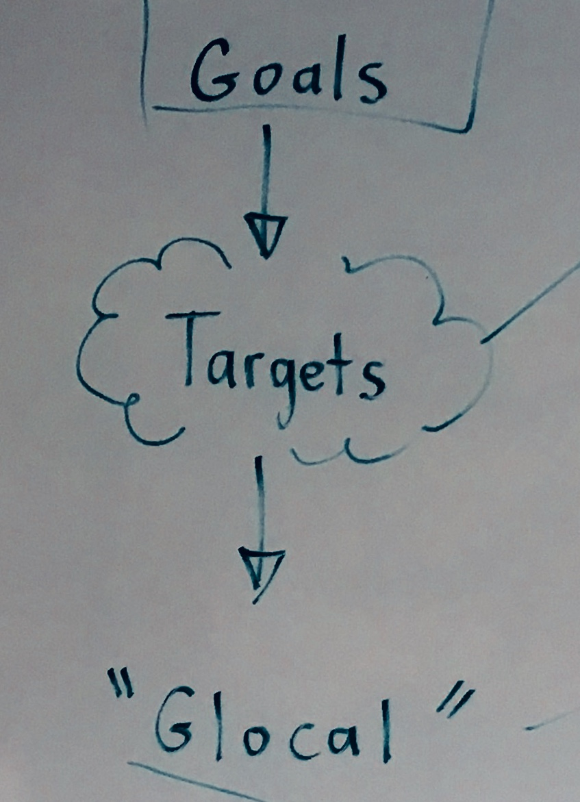 "Identify an SDG Goal  Find two targets  ""Glocalize"" one target and create a compelling question"