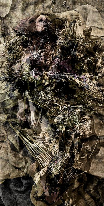 FlowerFood3crp1Rz72sm.jpg