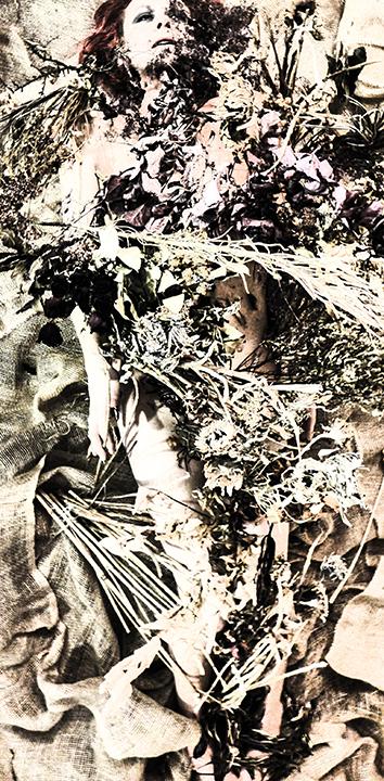 FlowerFood4crp1rz72sm.jpg