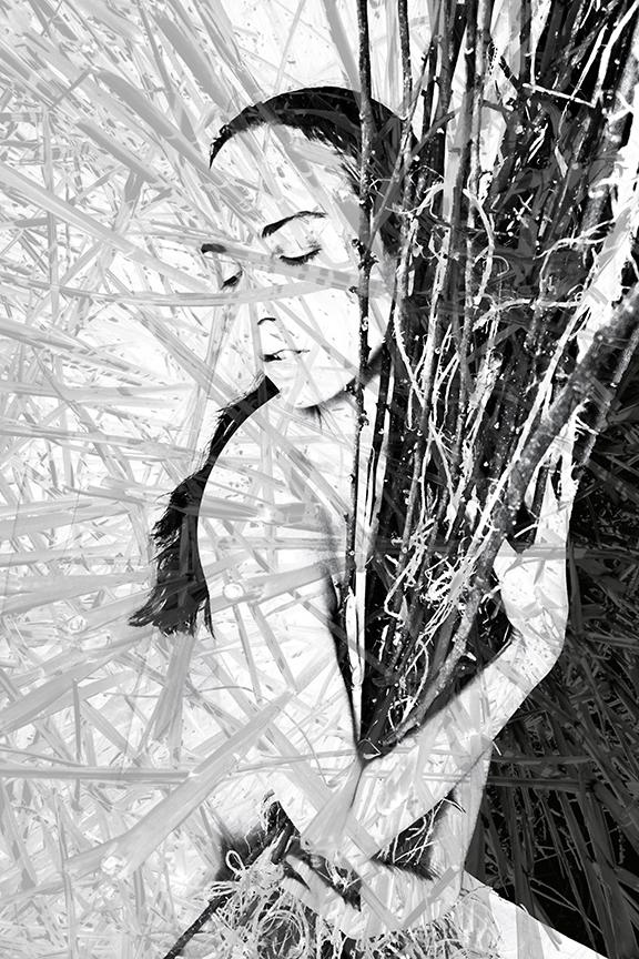 MarcelineBranches1BrtReedsSm.jpg