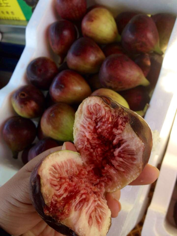 I love the texture of the seed along with the sweet flesh of this juicy fruit. I don't eat/buy this often, but I love fresh figs!