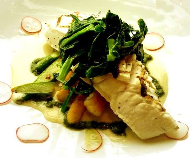 Grilled Alaskan Halibut