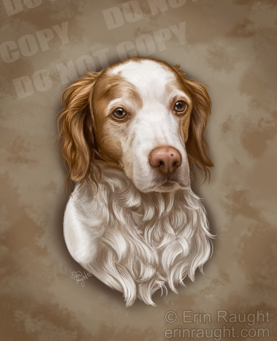 dogportrait3_final.jpg