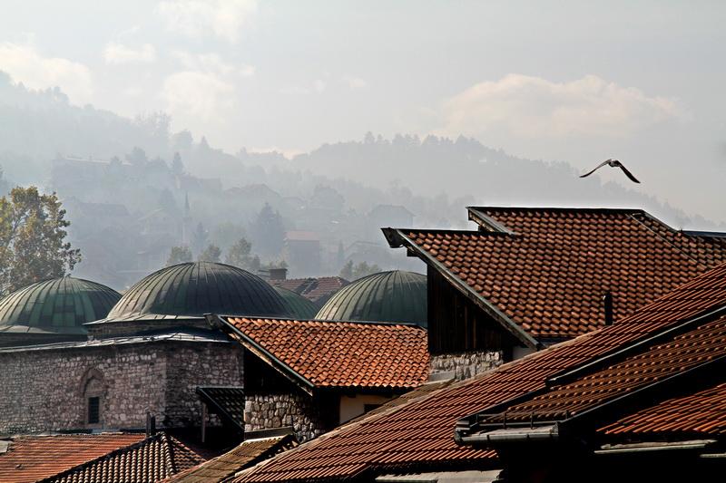Bosnian Freedom.JPG
