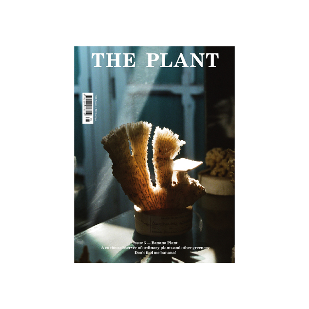 The Plant, Spagna