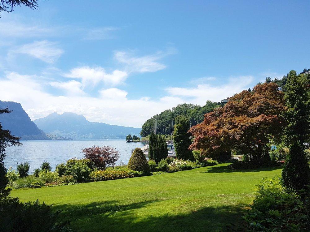 Park Villa Waldfried.jpg