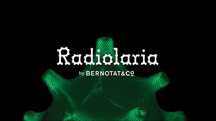 Bernotat&Co 'Radiolaria'