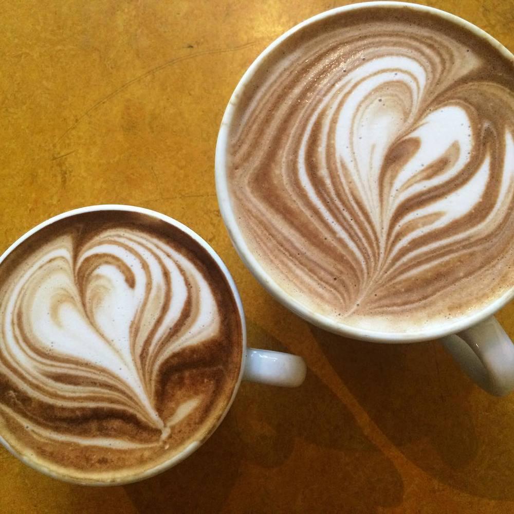 vivace-lattes.jpg