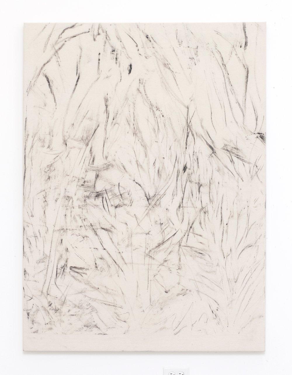 SDG-016-007, 2016 Artist made charcoal 56x42