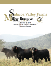 "October 2010 ""Salacoa Valley Farms and Miller Brangus"" Bull Sale"