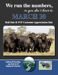 "Spring 2013 ""We Run the Number"" Bull and Female Sale"