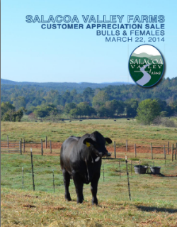 Spring 2014 Customer Appreciation Sale Bulls and Females  READ THE SALE REPORT