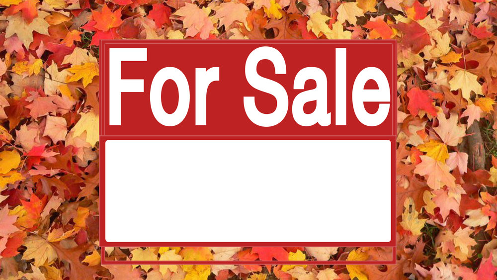 Fall Foliage For Sale Online