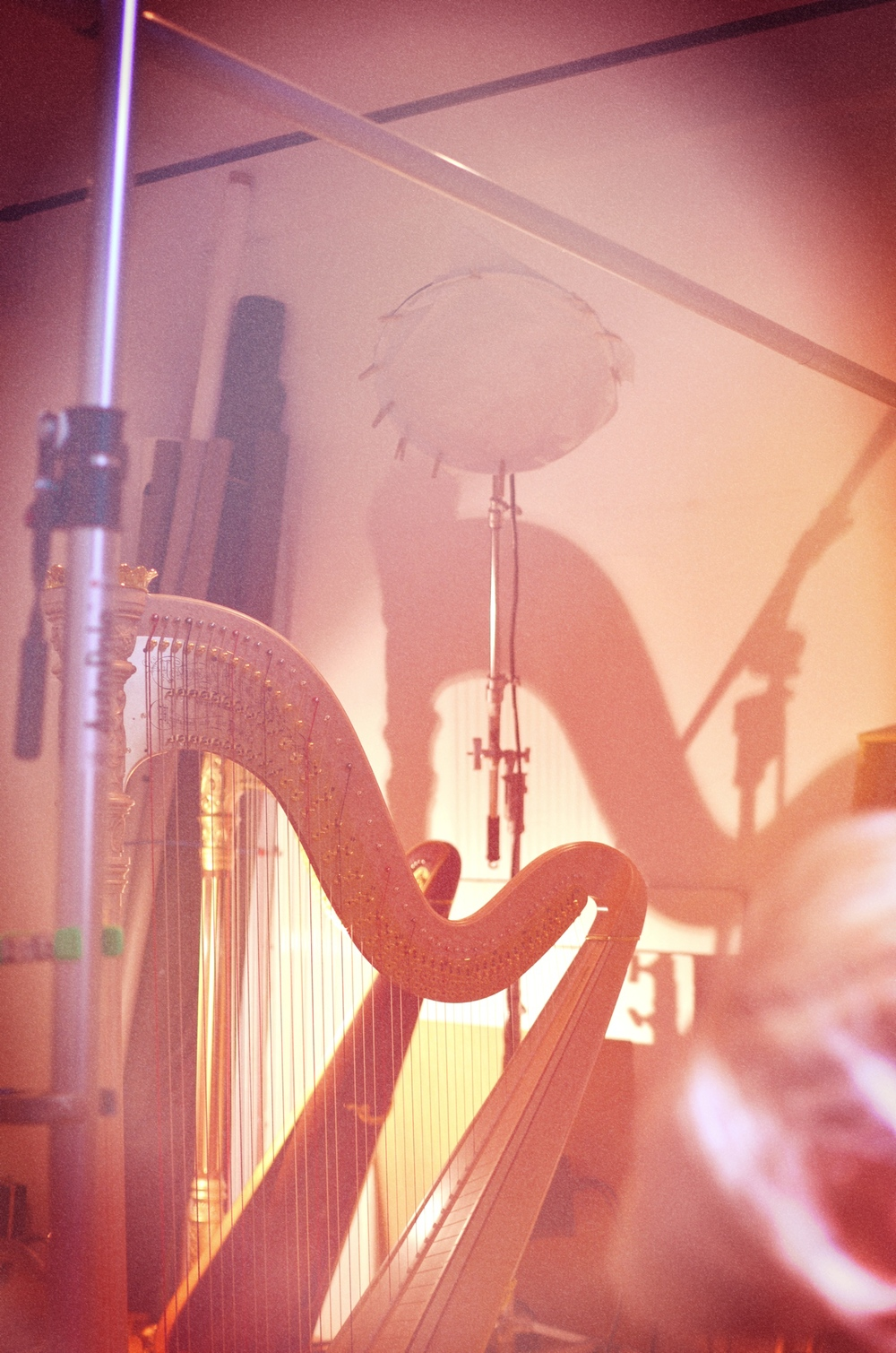 Photoshoot - Harps Vertical.jpg
