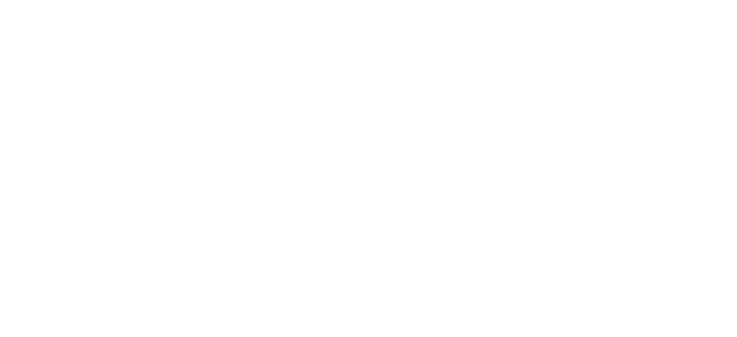 The Holding Co.