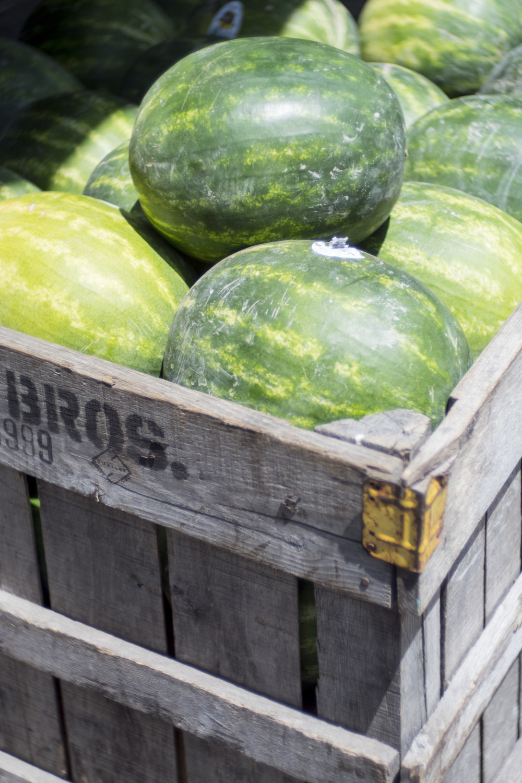Melons_9x6.jpg
