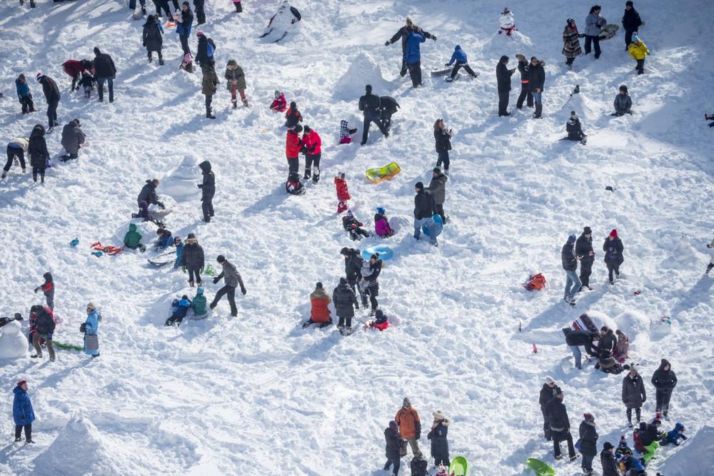 SnowFieldDay_9x6.jpg