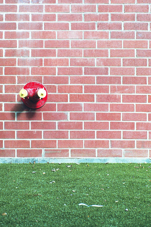 BrickWallLawn.jpg