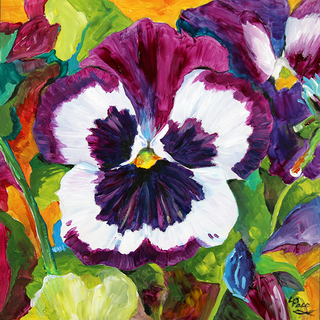 Pansy Play © Laurie Pace 2014
