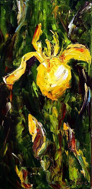 Yellow Iris by Laurie Pace © 2004