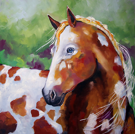 blog Young Appaloosa 12 x 12 Oil Board L Pace.png