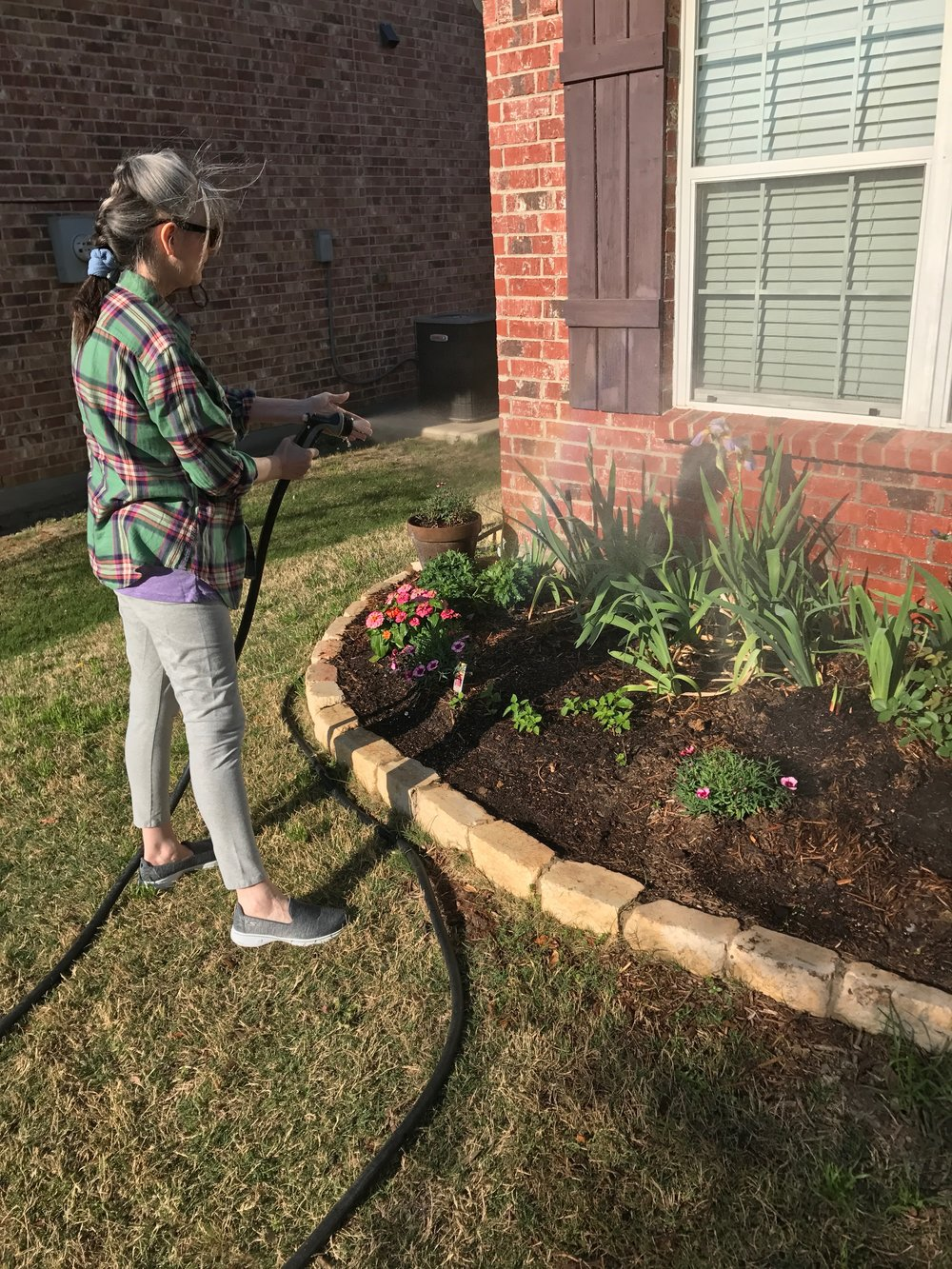 Laurie Pace Late March 2016 Watering the new plants.