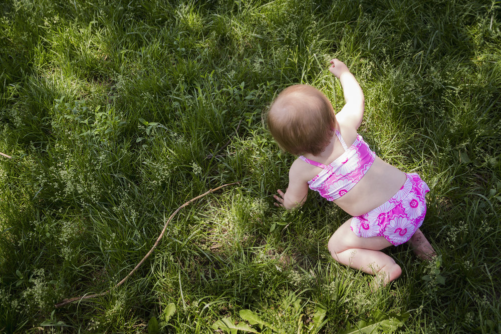Ruby in the Grass
