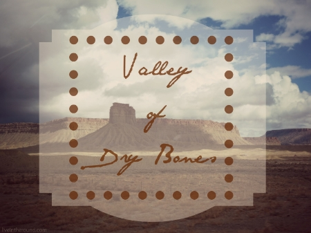 ES_Valley of Dry Bones_Photo.jpg