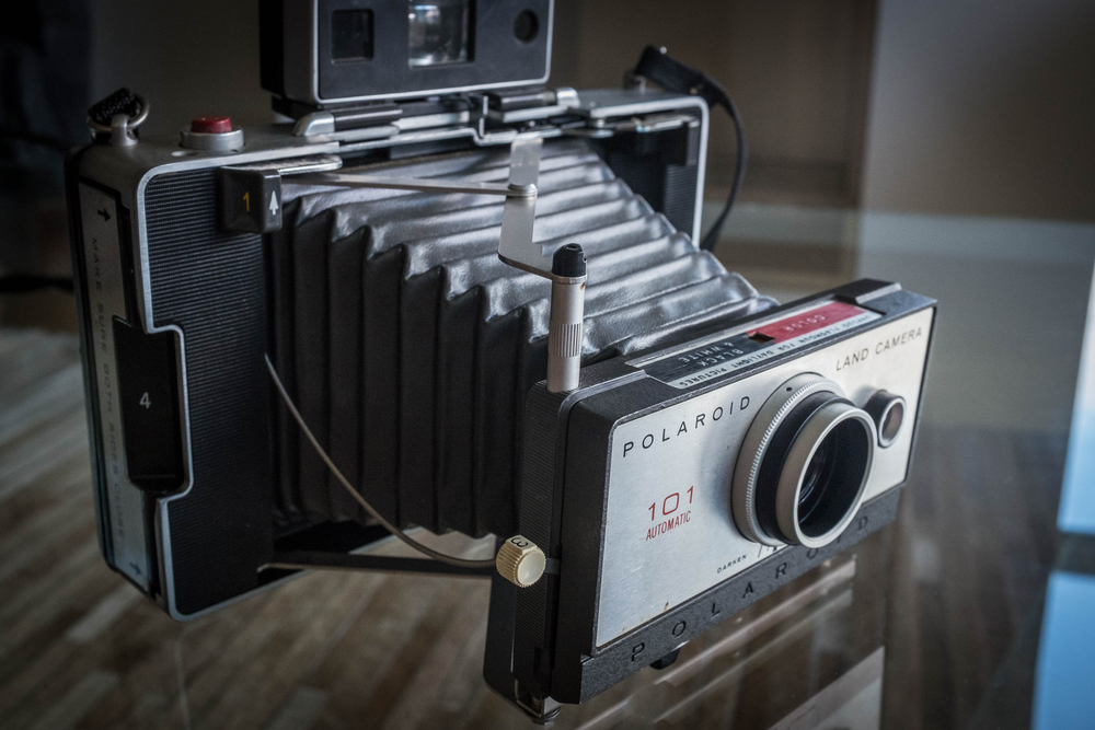 My Polaroid Land Camera 101