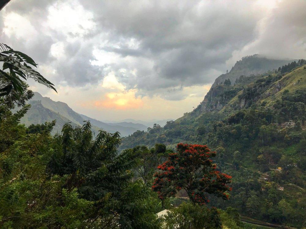 The view in Ella