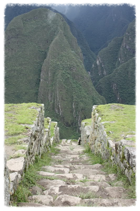 Photo taken at Machu Picchu 2010.