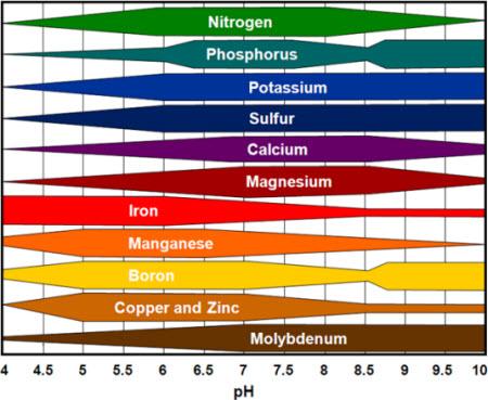 soil_ph_1.jpg