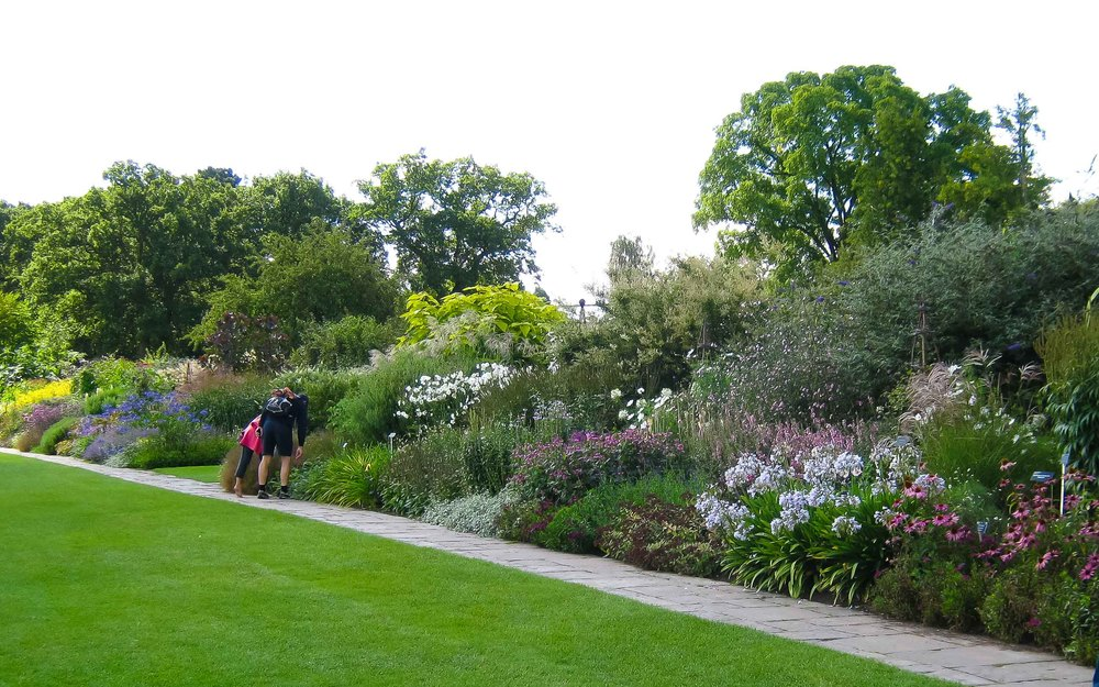 wisley mixed border