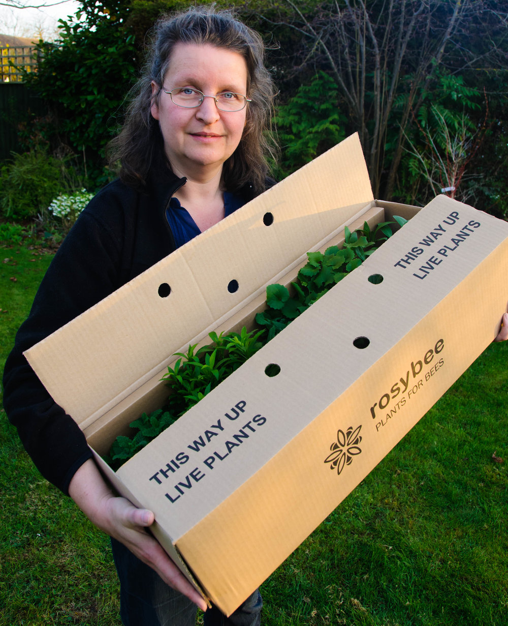 Rosi with a typical box of our plants