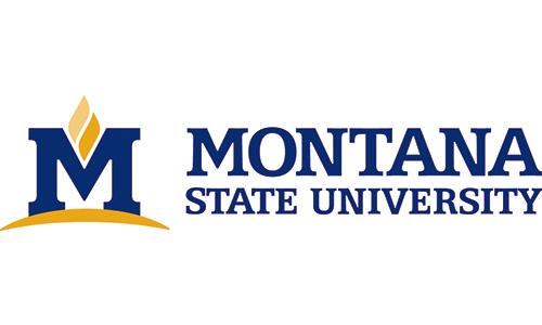 Montana State.jpg