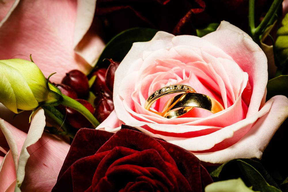 Wedding_505.jpg