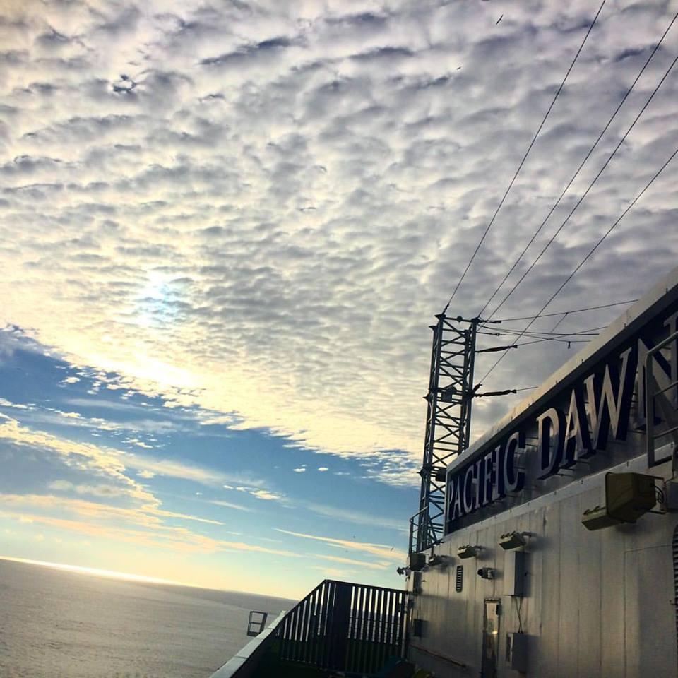 Pacific Dawn 1.jpg