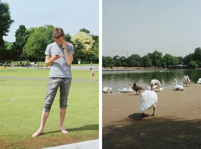 3Rich-Swan.jpg
