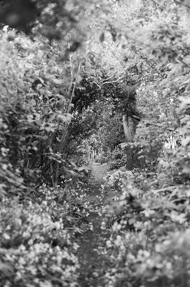 11-garden.jpg