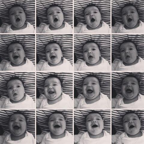 Chub. Cheeks. Chins. A cherub in action. 🐯❤️ #tadhgthetiger