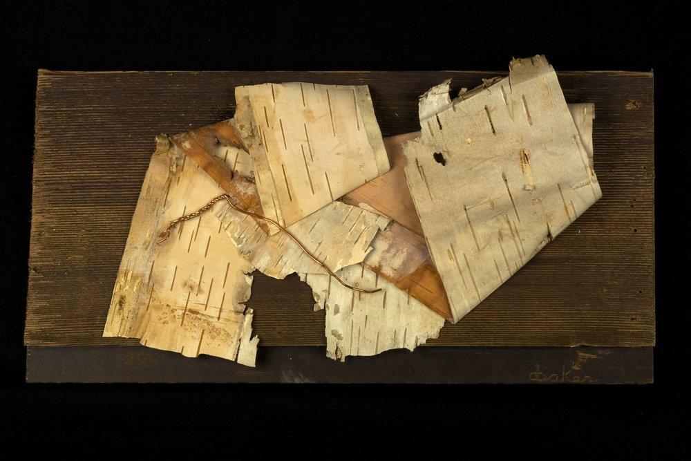 Wood-BarkSeries-II-.jpg