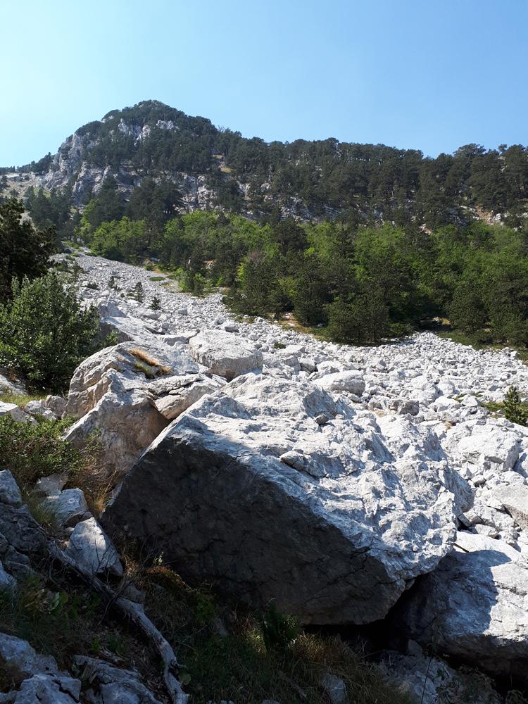 Камени блокови на дну сипара