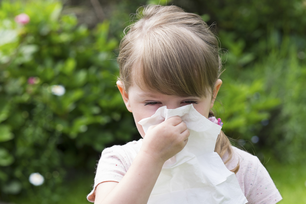 The difference between colds flu's and allergies (chart) -