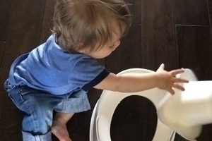 6 simple steps to potty training -