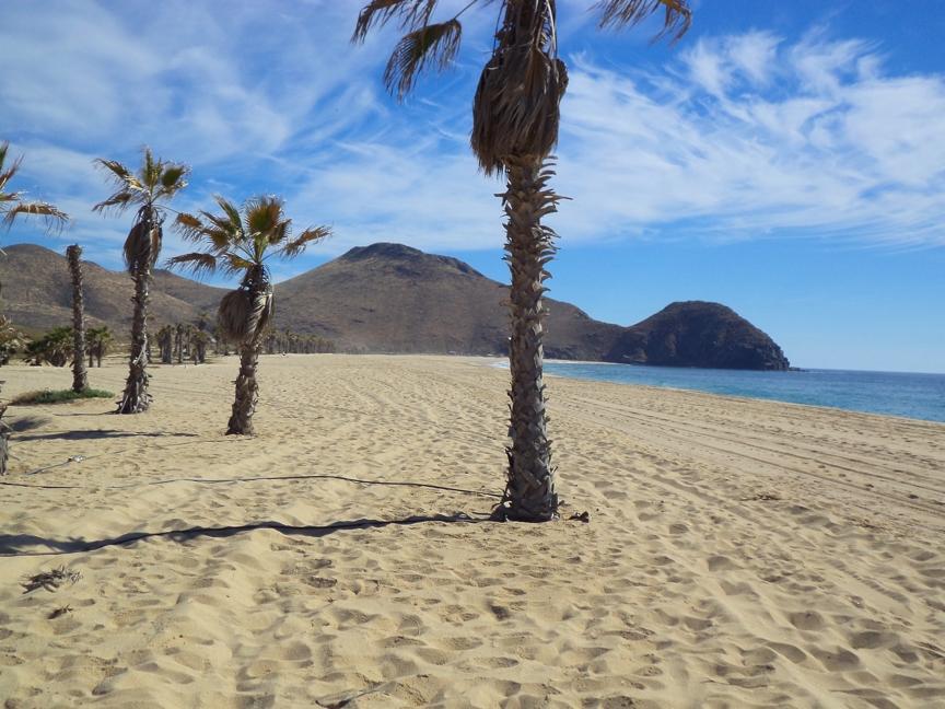 Punto Lobos Beach