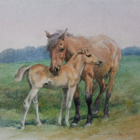SOLD- New Forest mare & foal w/color