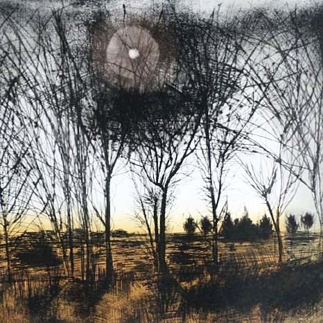 Winter Trees - Etching & Aquatint
