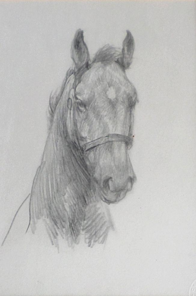 Lucy Kemp Welch pencil study
