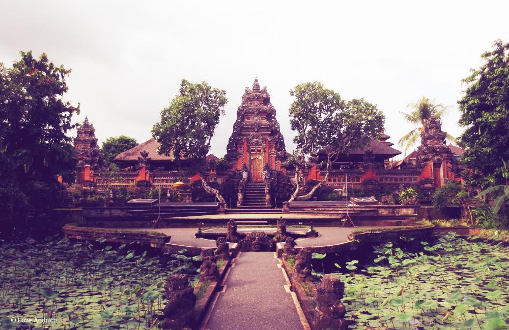 SpiritedPursuit_Bali7.jpg